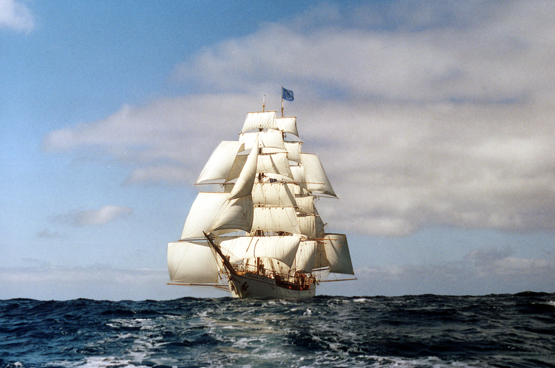 bark europa windseeker