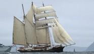 Gulden Leeuw Sailing