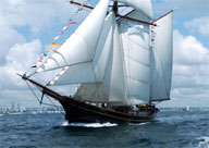 Tall ships, yachts, small ships : choose what you like