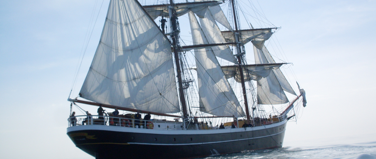 Picture of the Tall Ship Morgenster Sailing