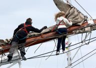 Morgenster - Sail Training - EU - Tall Ship - Crew