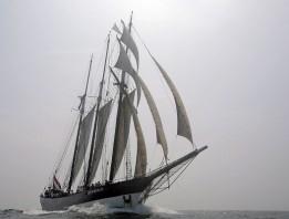 oosterschelde-windseeker-adventure-journey-tall-ship-races-sail-training-on-board-adventure