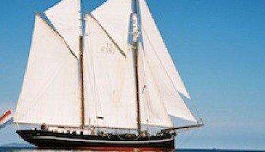 Iris-windseeker-adventure-journey-tall-ship-races-sail-training-on-board-adventure