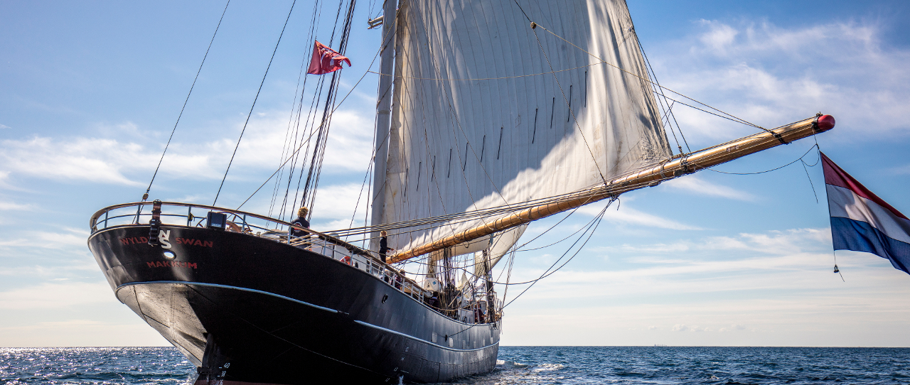 Sailing Adventure on board the Wylde Swan