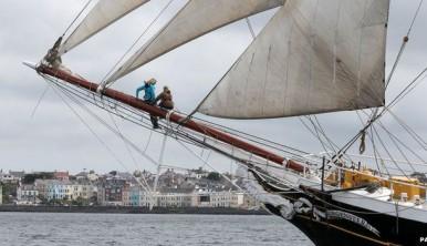 trainees-sailing-experience-sailtraining-morgenster-windseeker