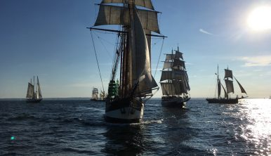 Photo of the Tall Ships during Parade of Sail