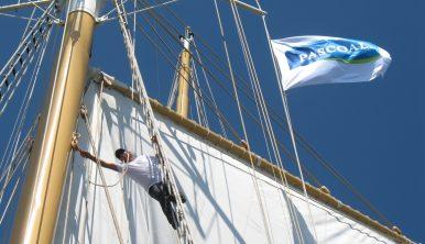 santa-maria-manuela-mast-sailing-trainee-experince