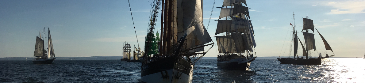Tall Ships Races 2018, picture of Ships sailing in a Parade of Sail