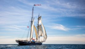 Tall Ship Wylde Swan sailing