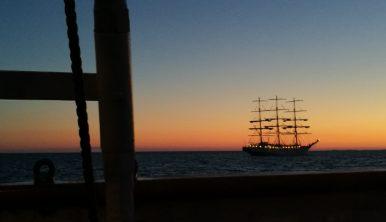 Tall Ships Races sailing Tall Ship at sunset